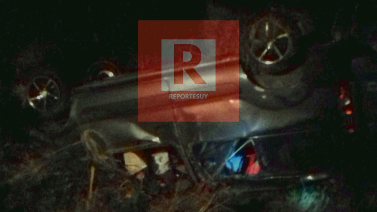 Un auto chocó en la ruta 9 contra un novillo