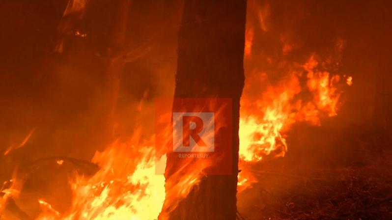 incendio barrio parque 5.jpg