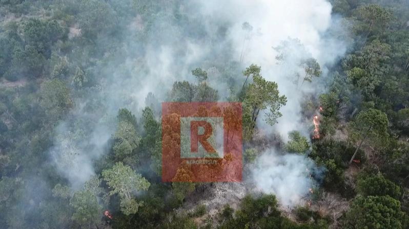 incendio barrio parque 6.jpg