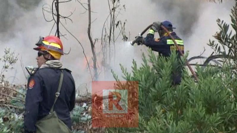incendio barrio parque.jpg